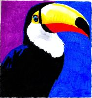 toucan No 1 by EwaBlackWidowVsHare