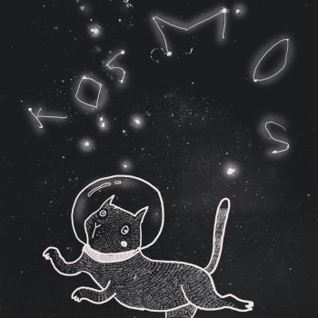 Cat in Space by Arianna-chan