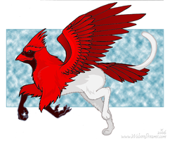 Cardinal Gryphon by Skychaser