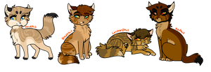 .: Copperpaw X Softpaw - Hypo kits PC :. by Joker-Darling