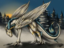 Wintery Dragon by Natoli