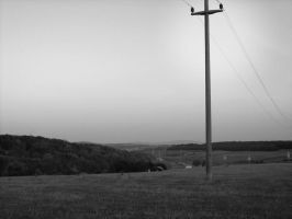 electricity pole by ad-dushk-ad