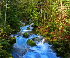 Flow HDR by rustwood