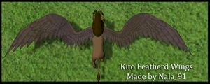 Kito Featherd Wings by Nala91