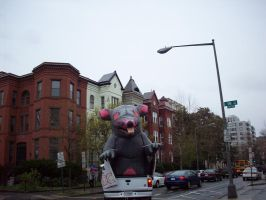 Giant Inflatable Rat 2 by whiteroses-art