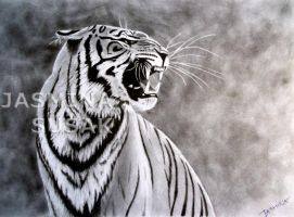 My Tiger by JasminaSusak