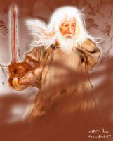 gandalf by mudspit