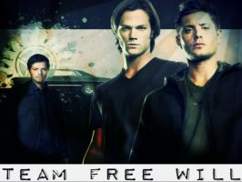 TeamFreeWill Background by KrazyKat22