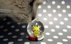 Kitty loves Pikachu by lyrese