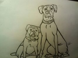 Pug and Boxer by EpicCatLover