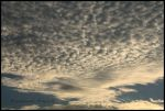 Cirrocumulus by Deviantinterested
