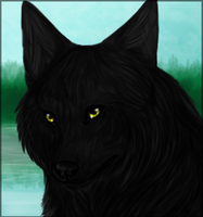 Wolf Head by KendaWolf