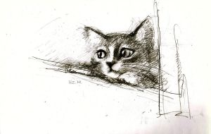 I drew a kitten at home by liz1028