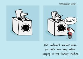 Laundry Machine by sebreg