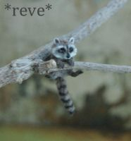 Miniature Baby Raccoon Sculpture by ReveMiniatures