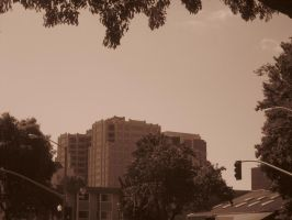 21st Century Sepia: Sky by cillanoodle