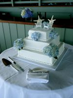 adirondack wedding cake by pinkshoegirl