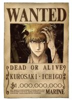 WANTED Ichigo by Ainnita
