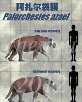 Palorchestes azael by sinammonite