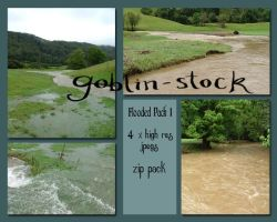 Floodwater Pack 1 by GoblinStock