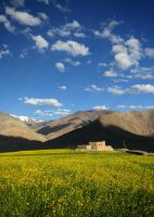 House and Field, Himalayas by orographic