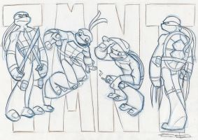 tmnt overview wip by enolianslave