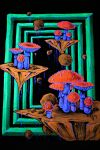 shrooms dont leave me alone by tripplejay