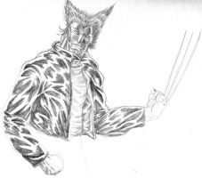 WOLVERINE by bandro