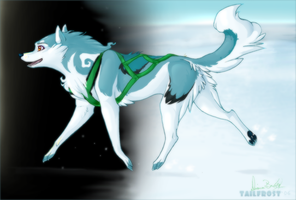 Into the Unknown by tailfrost