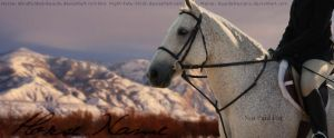 Natural BG Horse Pic by EquideDesigns