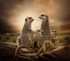 Meerkats by ThelemaDreamsArt