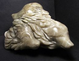 Alabaster Wolves view 1 by Meadowknight