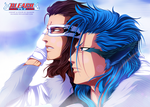 Grimmjow and Starrk by salim202