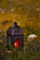 Lantern in the grass by cezare-me