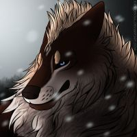 :CM: Winter wind by KirikoSoul