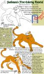 CS2 Coloring Tutorial - Tiger by fastdemon