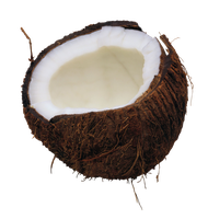 Coconut png by AbsurdWordPreferred