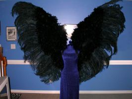 Giant Black Wings by angelratdesigns