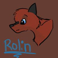 Practice- Rolin by Sketchly