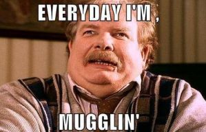 Muggles these days by HatersGunnaHate162