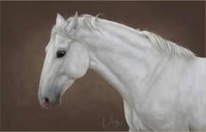 Wyrran the White by Naia-Art
