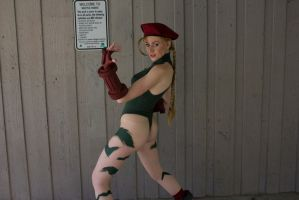 Another Cammy Pose by OptimusSpine