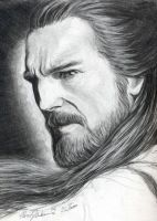 Master Qui Gon Jin by misphred