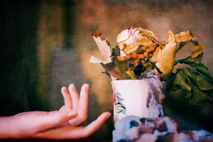 The touch by Emmatyan