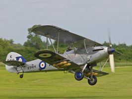 Hawker Hind - Old Warden by davepphotographer