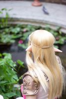 A Princess, Waiting -Legend of Zelda cosplay by BanditsSpurs