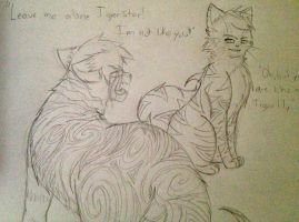 Tigerlily and Tigerstar by selene411