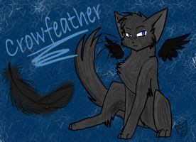 Crowfeather by Sunset-Firefly