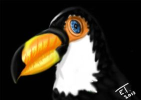 Tucan by Lillith-The-Frog