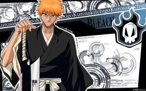 Ichigo's Components by killaxterrasquad